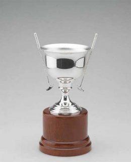 Trofep Golf Plata de Ley Jose Luis Joyero